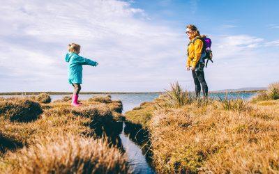 7 consejos para elegir un seguro de vida